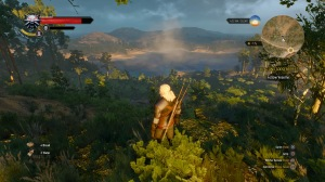 The Witcher 3: Wild Hunt_20150506213012